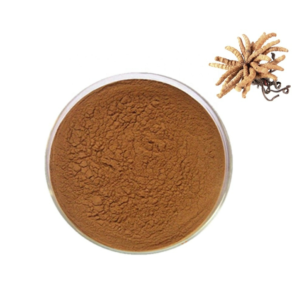 Cordyceps Sinensis Extract(30% Polysaccharides )