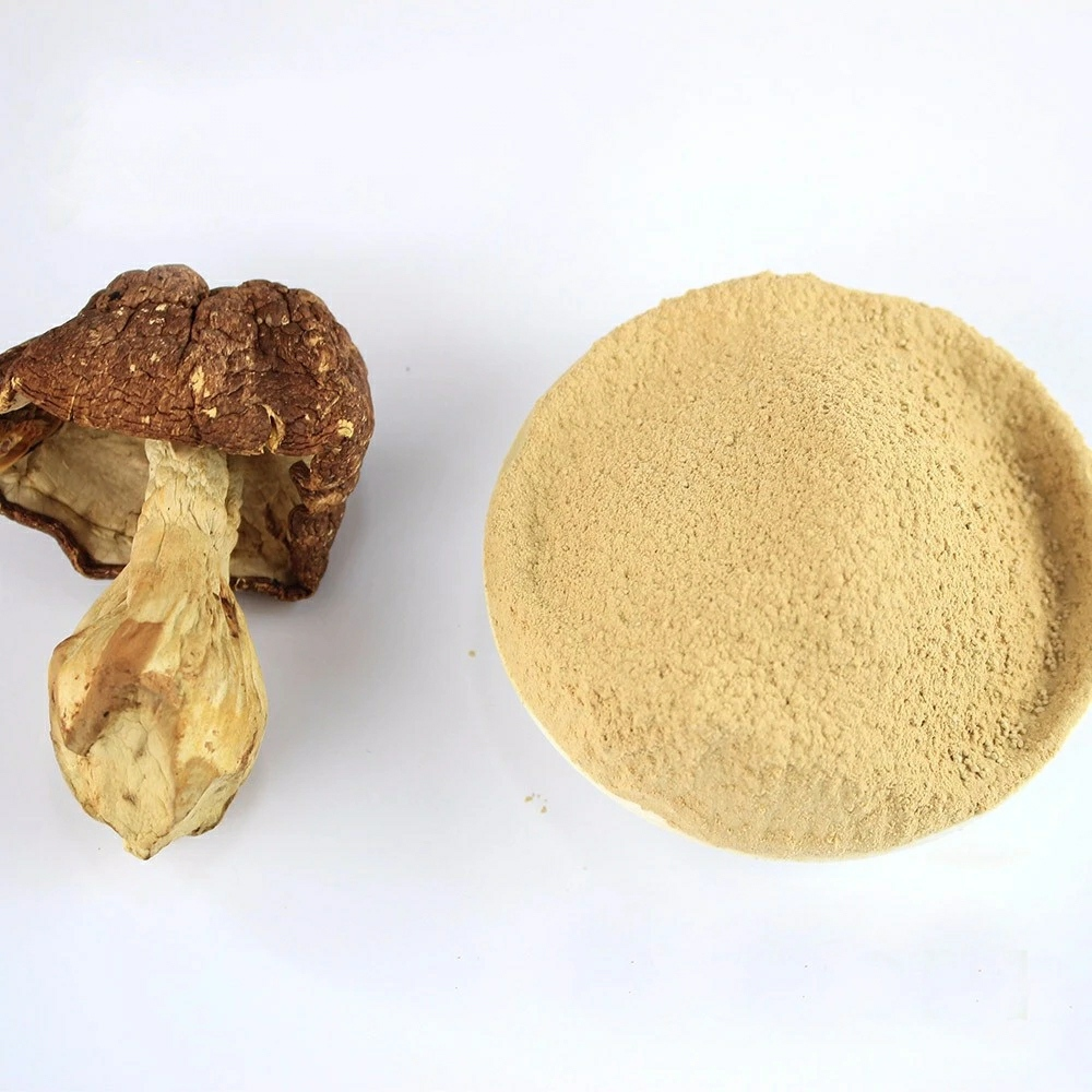 Agaricus Blazei Powder Supply1000 x 1000 jpeg 285kB